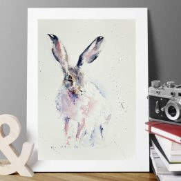 Eastern Hare