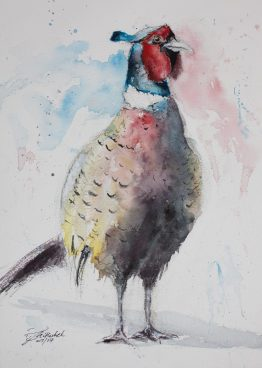 pheasant watercolour