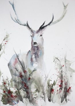 Deer at the meadow