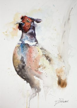 Watercolour Pheasant