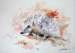 Watercolour Hedgehog