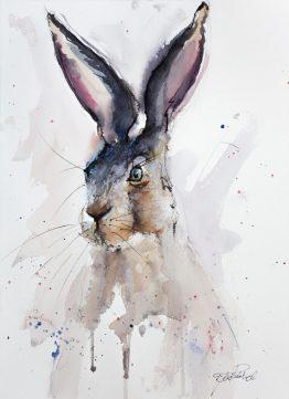Watercolour-Hare