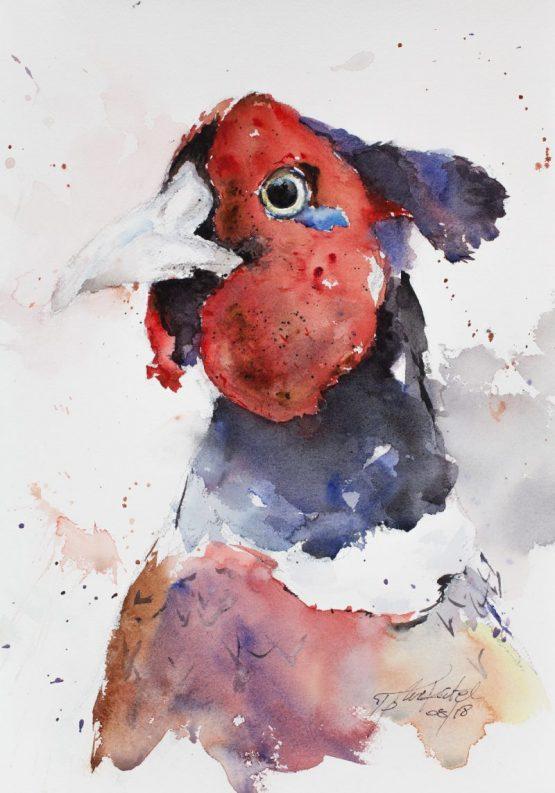Pheasant-Portrait