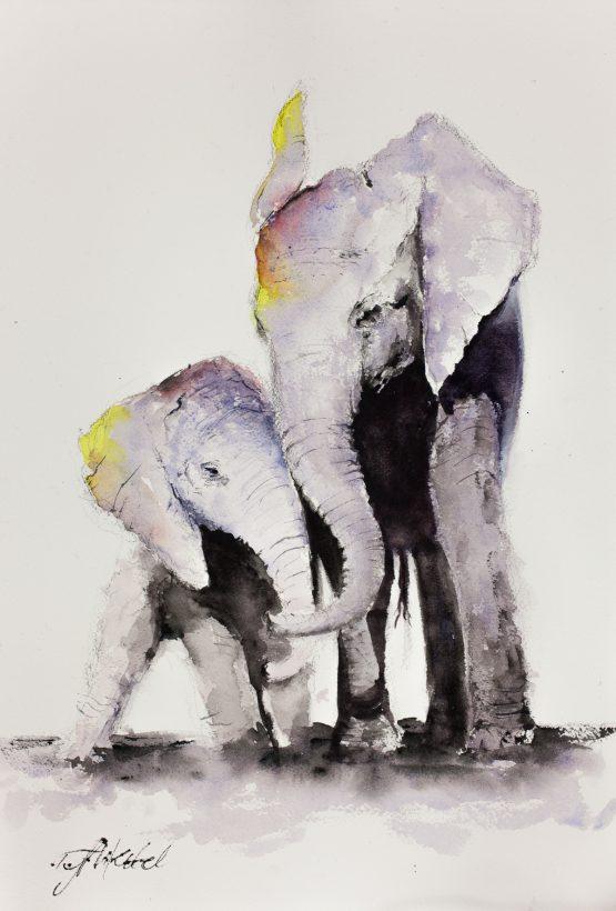 Single Mum Elephant